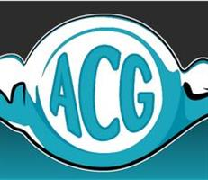 Testimonial by Auto Collectors Garage regarding the WordPress theme integration services of Nelson & Co (N&C)